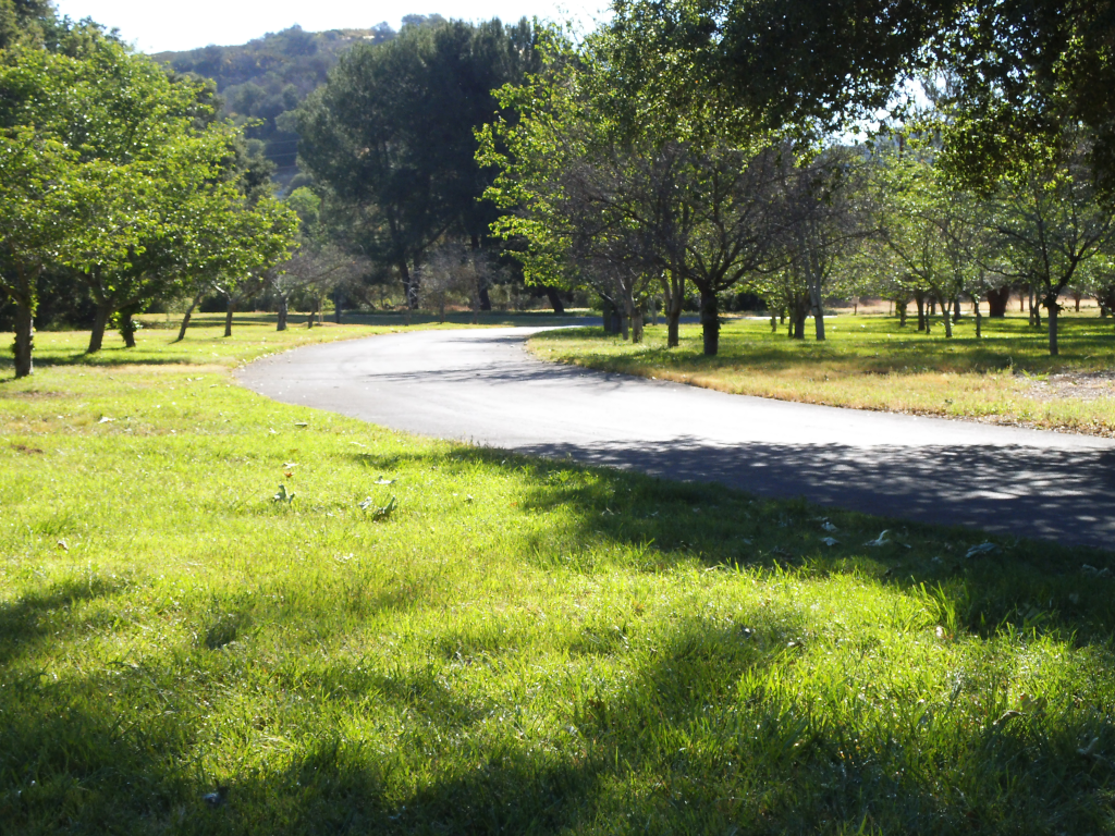 Landscape at King Gillette Ranch