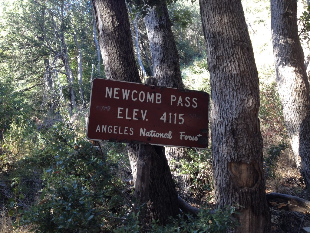 Newcomb Pass Sign