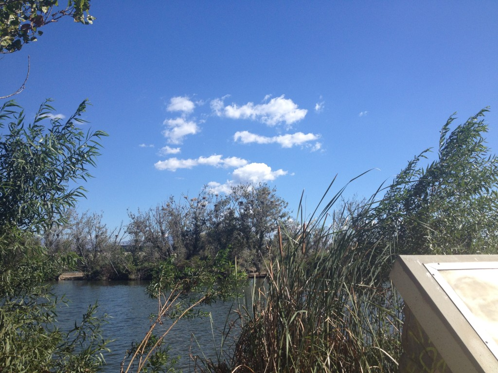 Cloud over Sepulveda Basin